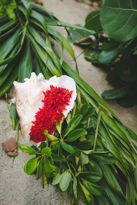 Conch Shell with bougainvillea on St. Croix Beach